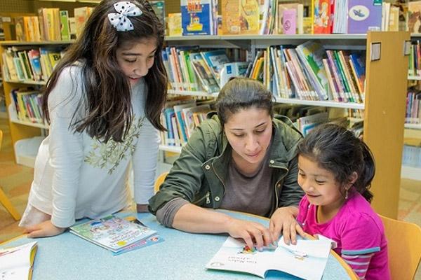 patrons reading at library