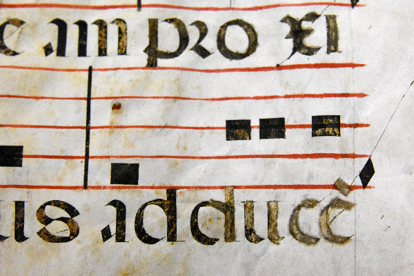 image of part of a page from a 16th liturgical codex