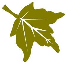 georgia state park logo leaf