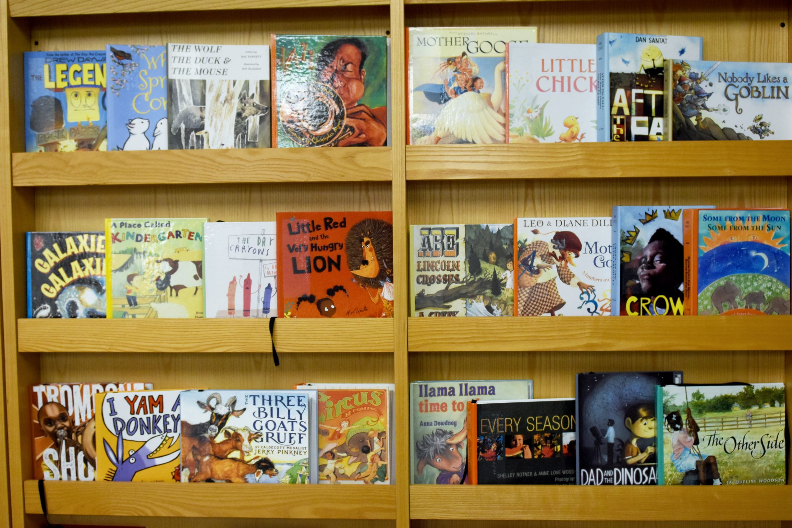 library books for blind and print disabled patrons